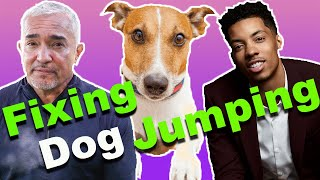 How To Stop A Dog From Jumping (Ft.Melvin Gregg)