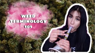 WEED TERMINOLOGY 101 (aka everything you need to know) // LIFEBEINGDEST