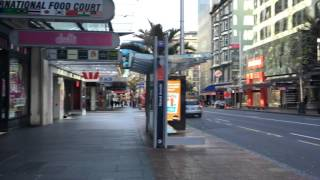 Walking In Auckland (New Zealand).