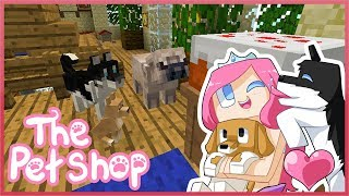 THE PET SHOP Ep5 The Very Hungry Pug Feat DAN TDM