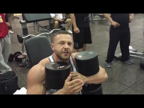 Shoulders with BULLDOG and 125lb Dumbbell Shoulder Press for Reps Charity Challenge! | Tiger Fitness