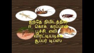 கொசு, ஈ, பல்லி, கரப்பான் பூச்சி போக இயற்கை வழி   Simple Home Tips In Tamil