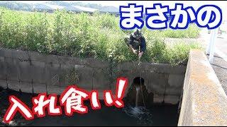 千葉県の有名バス釣りフィールドに「ヤバい穴」が存在した。