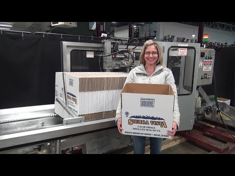 Wexxar Automatic Case Erector Bottom Hot Melt Glue Sealer  Case erector sold by Frain Industries