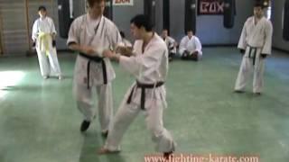Gambar cover Shinseikai Video Tecnica Difesa da Maegeri con Sabaki