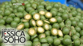 Kapuso Mo, Jessica Soho: Native fruits, only in the Philippines!