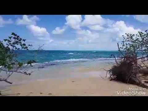 Concierto de voz, brisa y olas en Playa Rincón