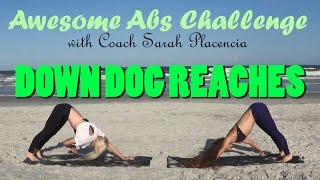 Awesome Abs Challenge Day 09 - Down Dog Reaches