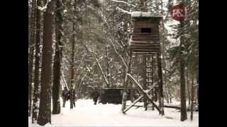 Смотреть онлайн Урок загонной охоты на кабана зимой