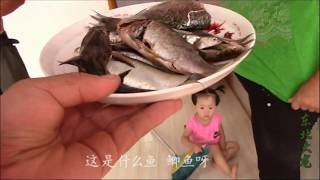 东北大龙235:野生江鱼该咋吃?老妈说给媳妇炖汤,女儿一旁却不干了