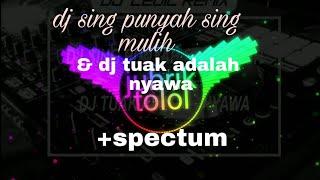 Dj Sing Punyah Sing Mulih & Tuak Adalah Nyawa+spectrum
