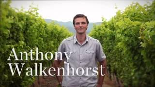 "Kim Crawford Wines: ""Our Journey"" with winemaker Anthony Walkenhorst"
