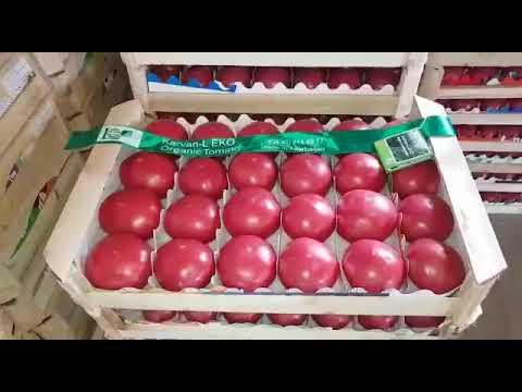 , title : 'Органические томаты / organic tomatoes / kumato/ pink paradise  by Karvan-L