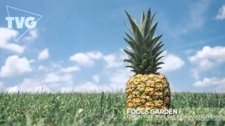 Fools Garden - Lemon Tree (Mike Wit & Garabatto Remix)