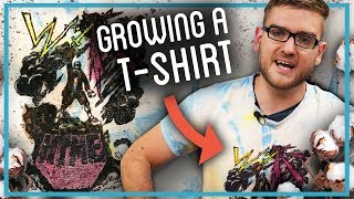 How to Grow a $5,000 T-Shirt in Only 3 Years