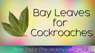 Bay Leaves: for Cockroaches