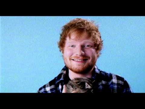 Ed Sheeran Cat Overload | 2015 Much Music Video Awards