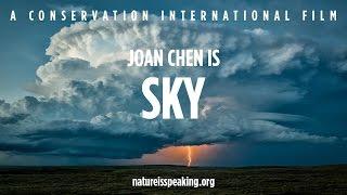 Joan Chen is SKY