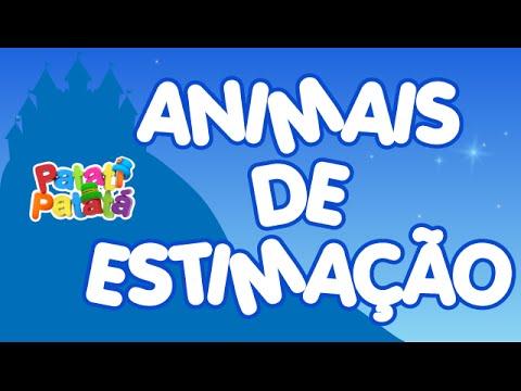 Animais de Estimação - Patati e Patata