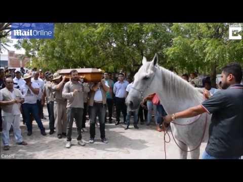 他將哥哥最好的白馬朋友帶到葬禮現場,牠跑向靈柩後的動情告別讓全場瞬間噴淚!