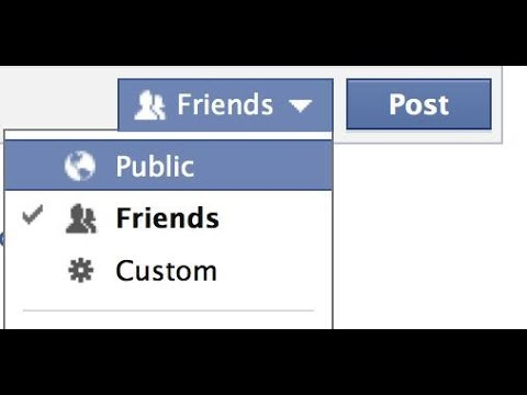 Why are My Facebook Posts Not Public and How To Set Posts Public In Hindi/Urdu 2017