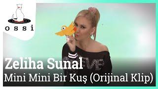 Zeliha Sunal / Mini Mini Bir Kuş