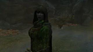 [Skyrim] Обзор модов - 18 - Прятки, Компаньон эльф