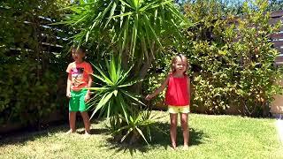 Toys Hunt Ищем Игрушки по дому ЧЕЛЛЕНДЖ Щенячий Патруль и Принцессы Despicable Me Candy Challenge