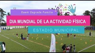 Celebración Día Internación de la Actividad Física
