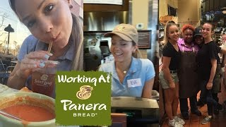 THINGS THEY DON'T TELL YOU AT PANERA - MY WORKING EXPERIENCE