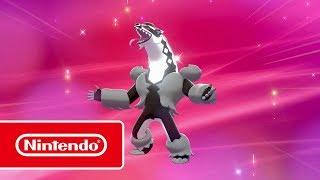 Pokémon Épée et Pokémon Bouclier - Nouvelles découvertes sur Galar (Nintendo Switch)