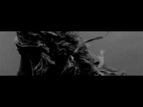 PRAISE THE PLAGUE - Beyond (official video)