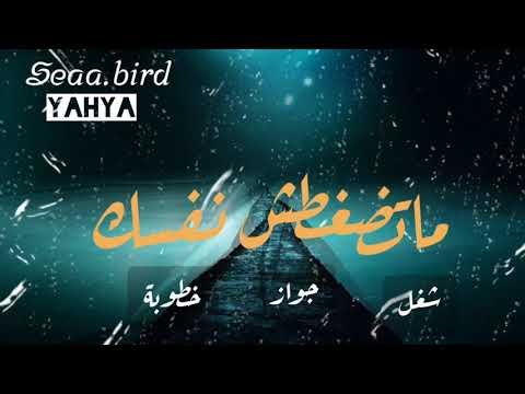 yehyaali's Video 164778507571 E9NMFQbNBZg