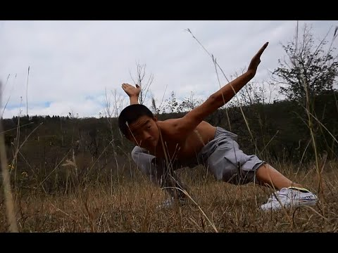 少林小罗汉拳 Xiao Luohan Quan (Arhat fist)
