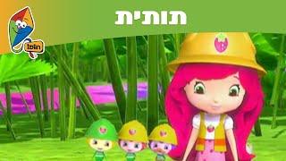 תותית - עונה 6: חדר בפסגה - ערוץ הופ!