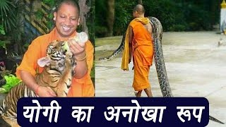 Yogi Adityanath and his love for animals, pictures goes viral | वनइंडिया हिन्दी