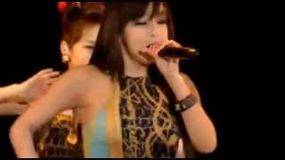 2NE1 - Can't Nobody Psy happening concert