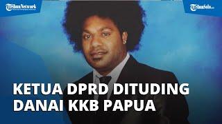 Sonny Wanimbo Ketua DPRD Tolikara Dituding Danai KKB Papua, Kader Muda NasDem Usia 26 Tahun