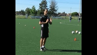 Soccer-Specific Speed, Agility and Quickness, On the Field, With the Ball