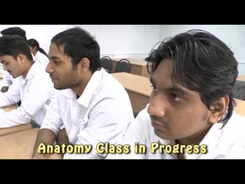 Phlebologist ศัลยแพทย์ proctologist