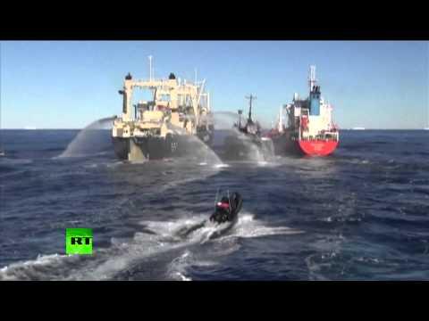 Watch: Japanese Whalers Ram One of Sea Shepherd's Ships