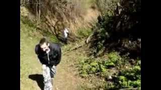 preview picture of video 'Mászótúra a Kopasz hegyre (Tokaj, piros útvonal)'