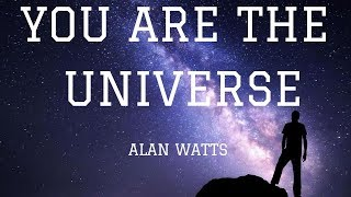 You Are The Universe   Alan Watts