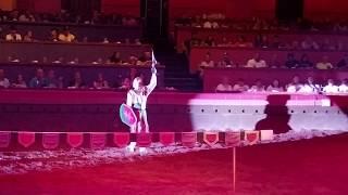 Choreographed Knight Battle