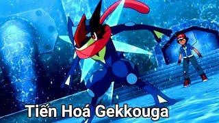Pokemon XYZ - Gekogashira tiến hoá thành Gekkouga, sức mạnh bá đạo | AMV