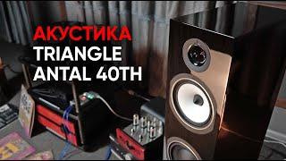 Акустическая система Triangle Antal 40th и как ее правильно слушать