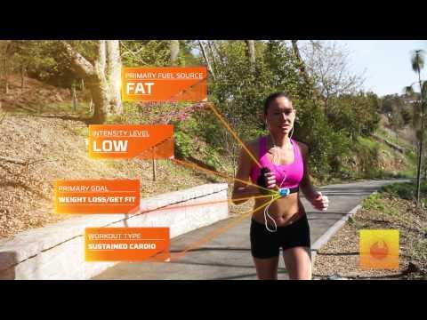 Burn and Burst Training Plan™ for Heart Rate Training