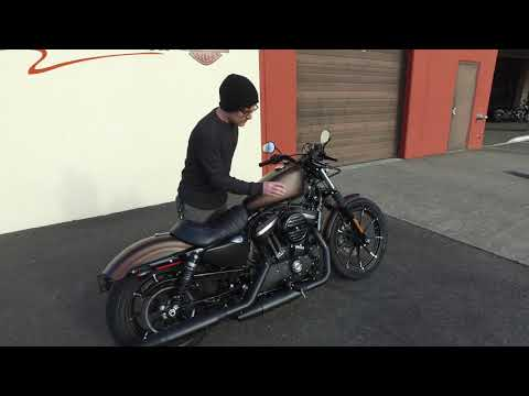 2019 Harley-Davidson Iron 883™ in Burlington, Washington - Video 1