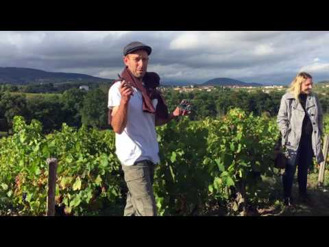 USAC Students Reflect on Study Abroad in Torino, Italy