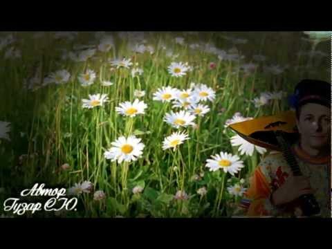 Комнатный цветок мужское счастье его болезни